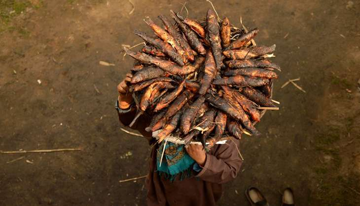 Kashmir's delicacy: Photos of the traditional smoked fish cooked over grass