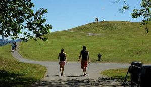 Brisk walking can improve knee function, arthritis in people
