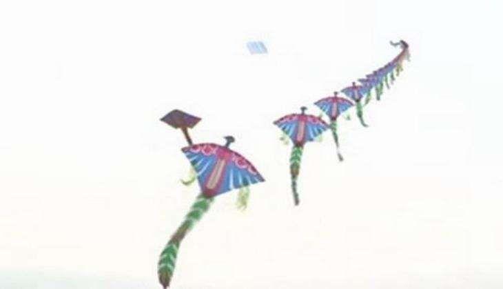 Hyderabad hosts second International Kite festival