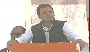 Work is not PM Modi's cup of tea, taunts Congress vice president Rahul Gandhi