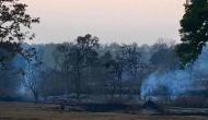बांदीपुर टाइगर रिज़र्व सूखे और जंगल की आग से तबाह