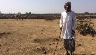 बुंदेलखंड में भाजपा अपनी जीत पक्की कर सकती है