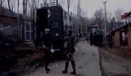 जम्मू-कश्मीर के त्राल में मुठभेड़, एक जवान शहीद, दो आतंकी मारे गए