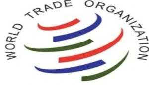 WTO members commend India for improving trade, economic policies in inclusive, sustainable manner