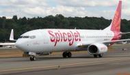 SpiceJet 18 सितम्बर से देश के बड़े शहरों में शुरू करने जा रहा है ये सेवाएं