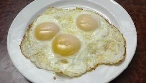 Kolkata: Man selling 'artificial eggs' arrested