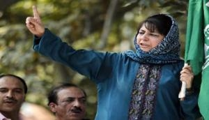 Mehbooba shouldn't wade into foreign policy issues: Activist