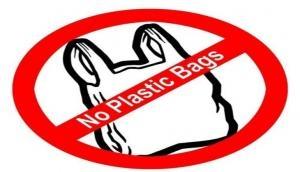 Wild West Innovation pledges to make India plastic-free