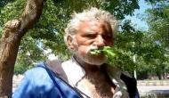 25 सालों से पेड़ों की पत्तियां खाकर जिंदा है ये पाकिस्तानी शख्स