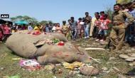 ट्रेन की चपेट में आए हाथी को फूल-मालाएं डालकर अंतिम विदाई