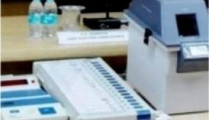 चुनाव परिणामों में हो सकती है 6 दिन की देरी, चुनाव आयोग ने SC में बताई ये वजह