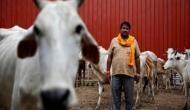 केरल हाउस में गोरक्षकों ने जबरन बांटा गाय का दूध