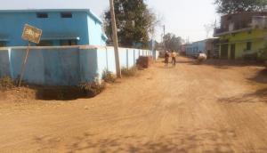 Aurda: the Chhattisgarh village that never goes looking for grooms