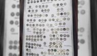 262 coins seized back in January declared to be antique