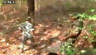 Dantewada: Cop injured in encounter with Naxals