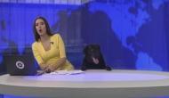 वीडियो: न्यूज़ रूम में कुत्ते को देखकर एंकर के उड़े होश, मिले 58 लाख से ज़्यादा हिट्स