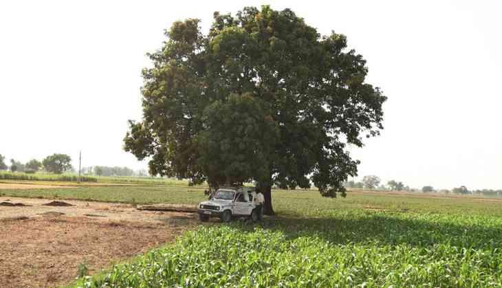Jewar gangrape: victims rubbish authorities' claims, NCW report awaited