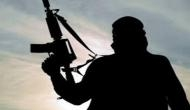 '5 militants blow themselves up during raids in Lebanon'