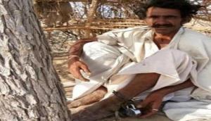 तुग़लकी फ़रमान: 'पति को हफ्ते भर पेड़ से बांधकर मारो थप्पड़'