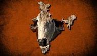 अब हैदराबाद हाईकोर्ट के जज बोले- गाय मां और भगवान समान
