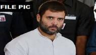 Congress slams 'rumours' of Rahul Gandhi joining Mandsaur protest