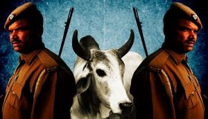 Under BJP in UP, crimes against cows are more sinister than riots & police killings