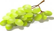 Eat grapes to protect your teeth from decay