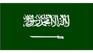 Saudi Arabia-led coalition criticises United Nations Yemen rights mission