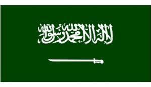 Saudi Army officer killed in terror attack