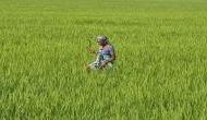 MP: लोक-लुभावन वादों के बीच किसान ने फिर की ख़ुदकुशी
