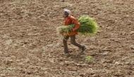 Madhya Pradesh farmer commits suicide in Shivpuri