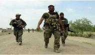 Afghan forces clear Tora Bora of IS militants: Defense Ministry