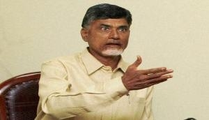 Chandrababu Naidu writes to Andhra DGP, alleges harassment of leaders