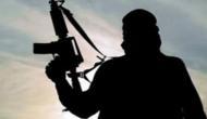 Sopore encounter: Two terrorists gunned down, ops underway