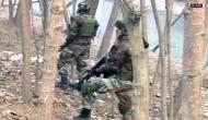महाराष्ट्र पुलिस को बड़ी कामयाबी, दो कमांडर सहित मार गिराए 13 नक्सली