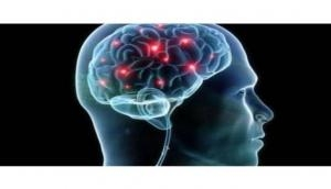 New biomarkers may help detect brain injury faster