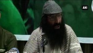 'कश्मीर की आज़ादी के लिए आवाज़ उठाने पर सलाउद्दीन को आतंकी घोषित करना ग़लत'
