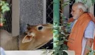 दुनिया को बीफ़ खिलाने में भारत तीसरे नंबर पर