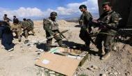 Eliminating Daesh, Taliban key to win Afghanistan war: Former U.S envoy