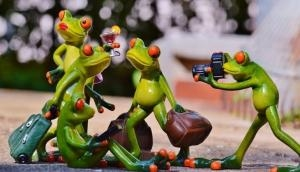 Dinosaur extinction set the stage for frog evolution