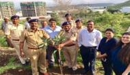 Second consecutive year, Mittal Brothers Pvt. Ltd. does Plantation Drive in Pune