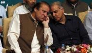 Under Shahbaz, democracy will weaken in Pakistan: Experts