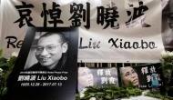 Liu Xiaobo, Chinese dissident who won Nobel prize, dies in custody