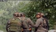 Tral encounter: Firing on, terrorists holed up inside cave