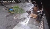 नारियल का पेड़ सिर पर गिरने से DD एंकर की मौत, वीडियो हुआ वायरल