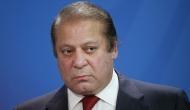 Panama Papers end Nawaz Sharif's political innings, Shahbaz Sharif to be interim PM