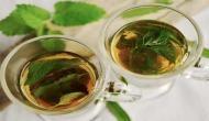 Green tea may improve memory, cuts obesity