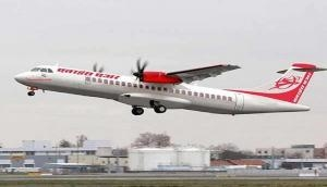 Now, bee attack grounds Alliance Air plane for 1 hour