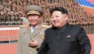 A rigid life in North Korea: Worms as long as 27cm found in injured soldier's intestines