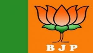 Yashwant Sinha is in search of new job, says BJP